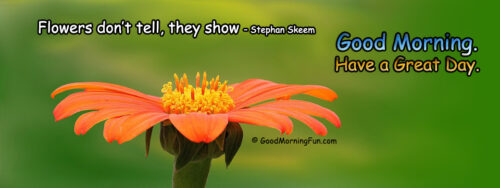 Flowers don't tell - they show - Good Morning