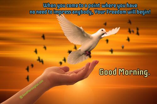 Freedom - Spiritual Quotes - Good Morning - Dove - Hand - Trust - God
