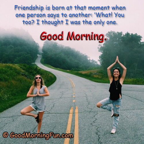 Good Morning Quotes for Special Friend - Friendship is born at that moment - Good Morning