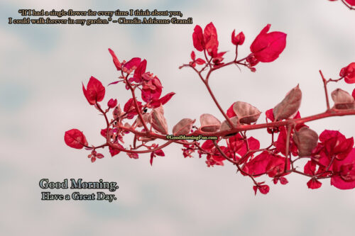 Good Morning Flowers Quotes for Love