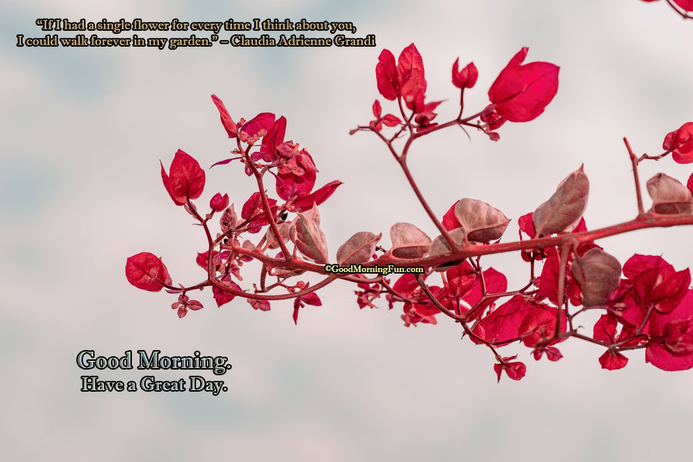 Good Morning With Lovely Flower Quotes Good Morning Fun