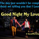 Whatsapp Good Night Status Quotes For Her