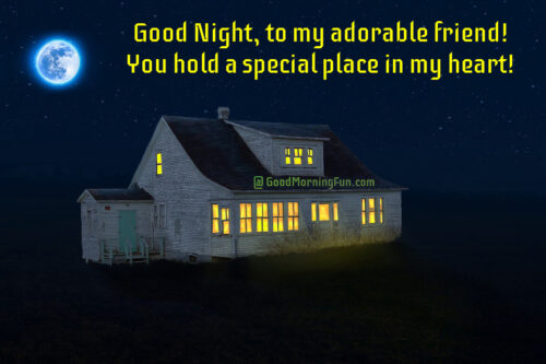 Heart touching good night message for friend