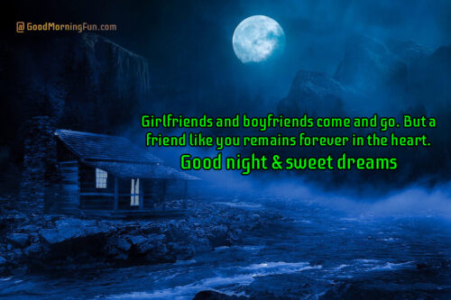 Heart touching good night quote for special friend
