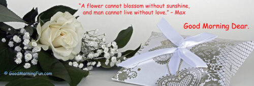 I love you flower greeting with Good Morning