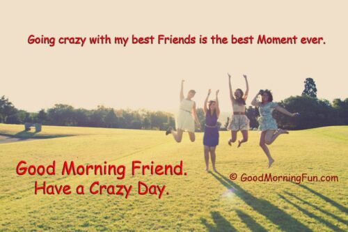 Quotes on Crazy Friends - Have a Crazy Day