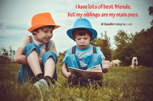 Sibling Quotes - I have lots of best friends, but my siblings are my main ones.