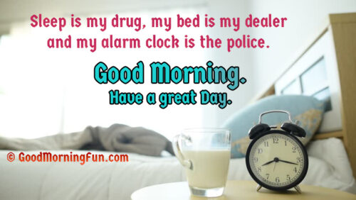 Sleep is my drug, my bed is my dealer and my alarm clock is the police.