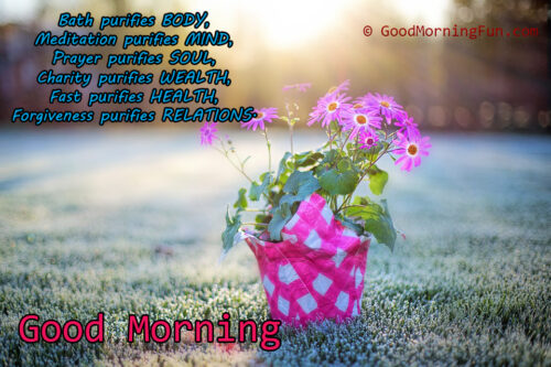 Pink flower good morning to purify the soul quote - Inspirational Good Morning Quotes