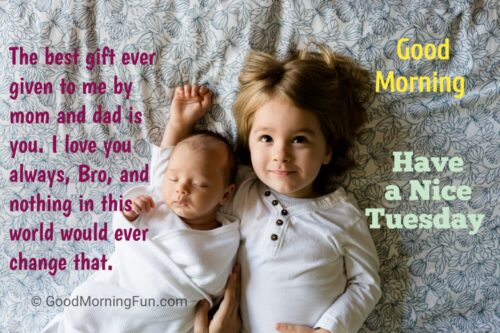 Happy Tuesday Quotes for Brother