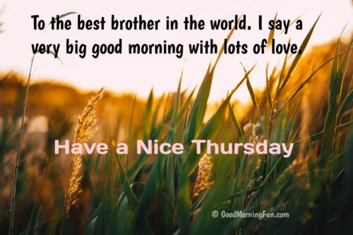 Nice Thursday Quotes for Brother
