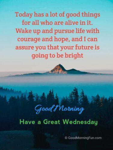 Wednesday Inspiration