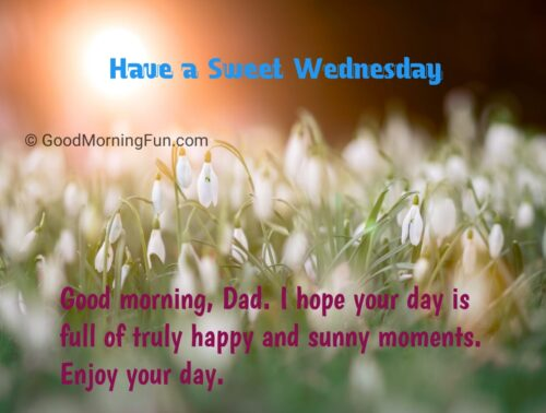 Wednesday Quotes for Dad