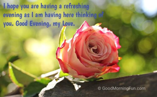 Good Evening Flowers Love Quote