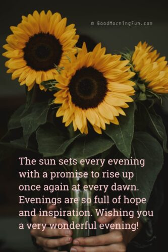 Good evening flowers images