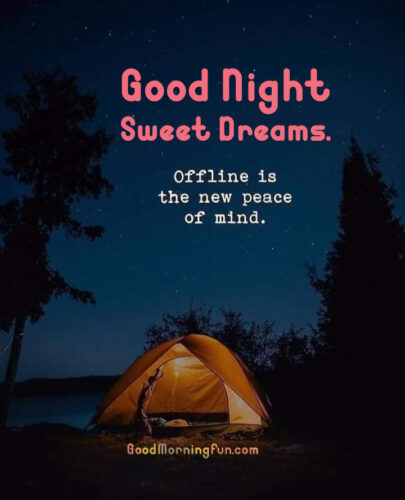 Offline is new peace of Mind - Funny Good Night Status